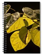 Yellow Leaves On A Tree Branch Spiral Notebook