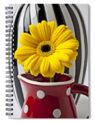 Yellow Mum In Pitcher  Spiral Notebook
