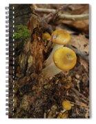 Yellow Mushrooms Spiral Notebook