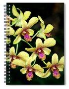 Yellow Orchid Cascade Spiral Notebook