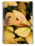 Yellow Petal Leaf With Sprig Spiral Notebook