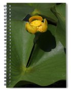 Yellow Pond Lily Spiral Notebook