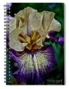 Yellow  Purple Iris Spiral Notebook