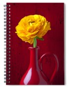 Yellow Ranunculus In Red Pitcher Spiral Notebook