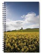 Yellow Rapeseed Field, Newgrange Spiral Notebook