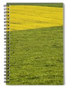 Yellow Rapeseed Growing Amongst Green Spiral Notebook