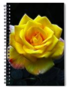 Yellow Rose In The Moonlight Spiral Notebook