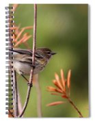 Yellow-rumped Warbler - Peaceful Pastels Spiral Notebook