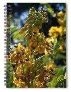 Yellow Senna Spiral Notebook