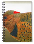 Yellow Shafted Flicker Spiral Notebook