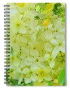 Yellow Shower Tree - 5 Spiral Notebook