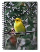 Yellow Songbird Spiral Notebook
