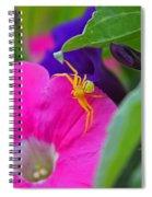 Yellow Spider Spiral Notebook