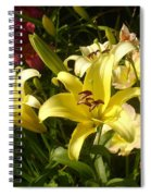 Yellow Splash Spiral Notebook