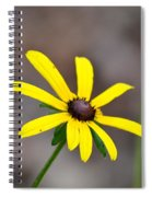 Yellow Star Spiral Notebook