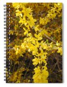 Yellow Strand Spiral Notebook