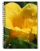 Yellow Tiger Lily Spiral Notebook