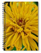 Yellow Zinnia_9480_4272 Spiral Notebook