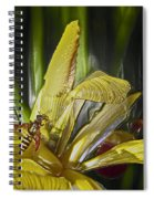 Yellowjacket Spiral Notebook