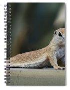 Yoga Ground Squirrel Style Spiral Notebook