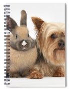 Yorkshire Terrier And Young Rabbit Spiral Notebook