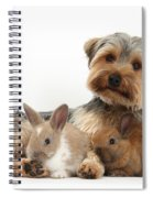 Yorkshire Terrier Dog And Baby Rabbits Spiral Notebook
