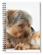 Yorkshire Terrier Dog And Guinea Pig Spiral Notebook