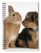 Yorkshire Terrier Pup With Rabbit Spiral Notebook