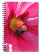 You And Me Are One Said The Bee Spiral Notebook
