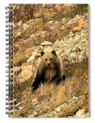 You Want My Photo? Spiral Notebook