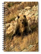 You Whistling At Me? Spiral Notebook