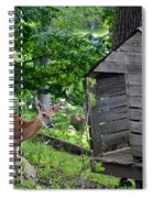 Young Buck At Treehouse Hopatcong Spiral Notebook