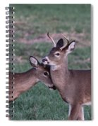 Young Bucks Spiral Notebook