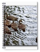 Young Geese Spiral Notebook