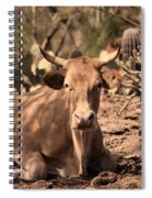 Young Longhorn Steer Spiral Notebook