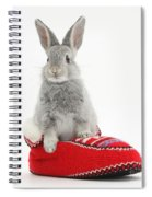 Young Silver Rabbit In A Knitted Slipper Spiral Notebook