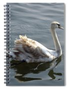 Young Swan Spiral Notebook