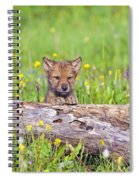 Young Wolf Cub Peering Over Log Spiral Notebook