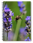 Your Next Spiral Notebook