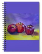 Yummy Apples Spiral Notebook