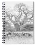 Zebra And Tree Spiral Notebook