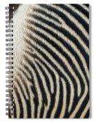 Zebra Caboose Spiral Notebook