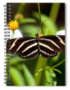 Zebra Longwing And Flowers Spiral Notebook