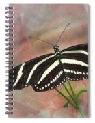 Zebra Longwing Butterfly-3 Spiral Notebook
