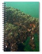 Zebra Mussels Spiral Notebook