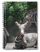 Zerbas Spiral Notebook