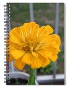 Zinnia Named After Zinn Spiral Notebook