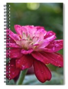 Zinnia Quenched Spiral Notebook