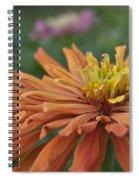 Zinnia Up Close 2823 Spiral Notebook