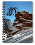 Zion National Park In Winter Spiral Notebook